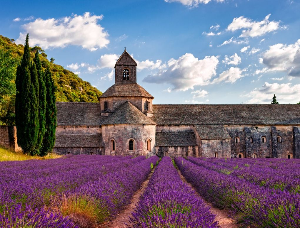 Südfrankreich - Provence zur Lavendelblüte